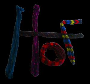 HoseOfFun Logo